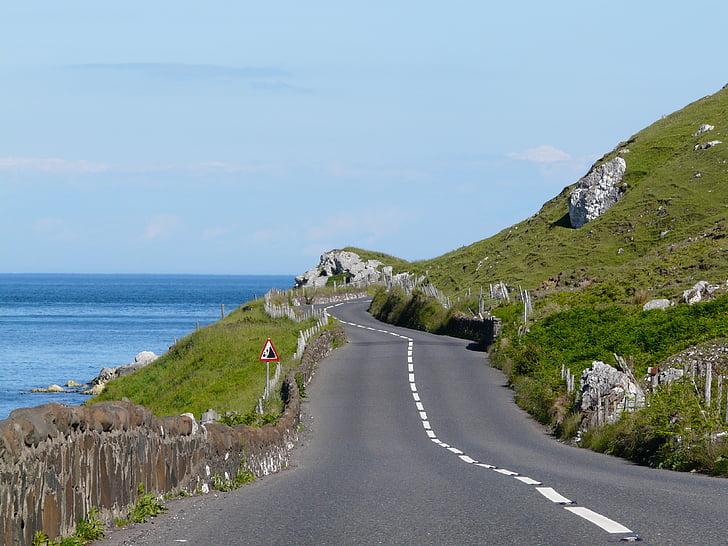 Irlandia, drogi, Wybrzeże, zielony, wsi, krajobraz, dekoracje