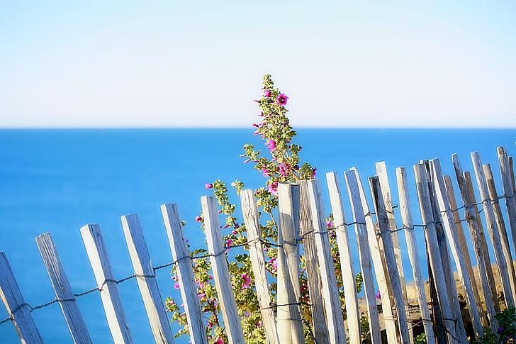 morje, krajine, narave, Sredozemsko morje, ograje, na prostem