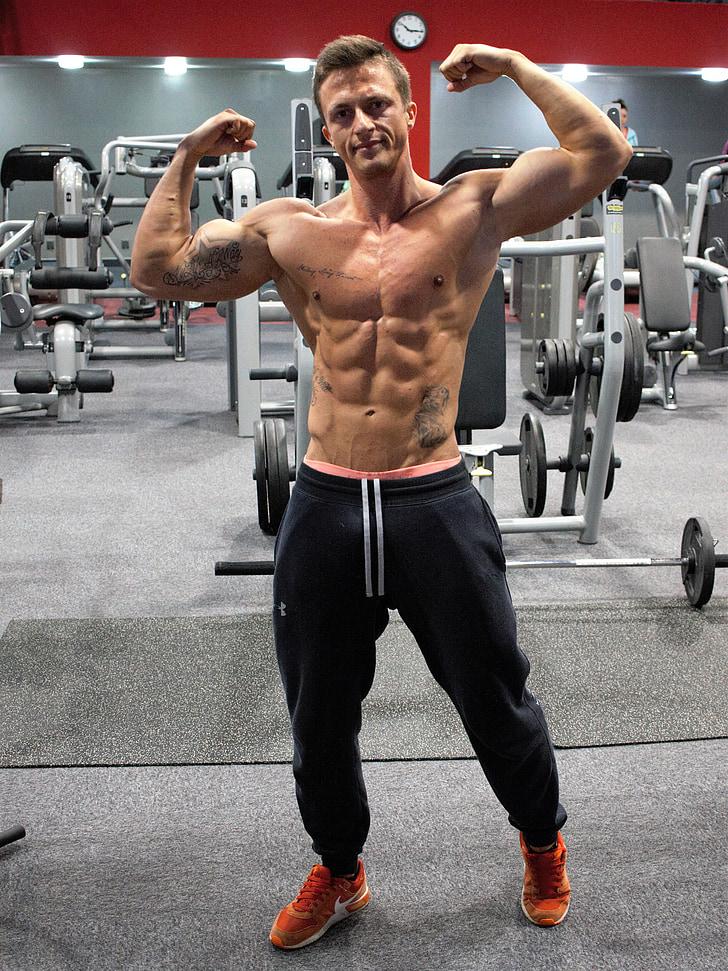 gimnàs, enfortiment, músculs, home