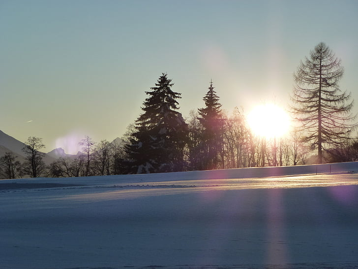 sun, snow, winter, nature, winter in the mountains, snow landscape