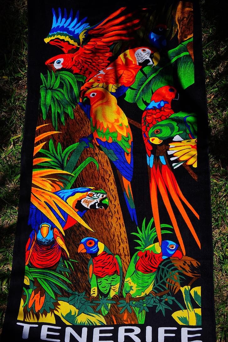 törülköző, fürdőlepedő, színes, szín, pad törölköző, Terry, papagájok
