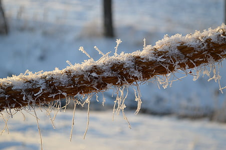 winter, frost, snow, cold, finnish, ice, snowy