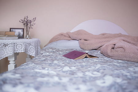 bed, bedroom, blanket, books, cover, cozy, cushion