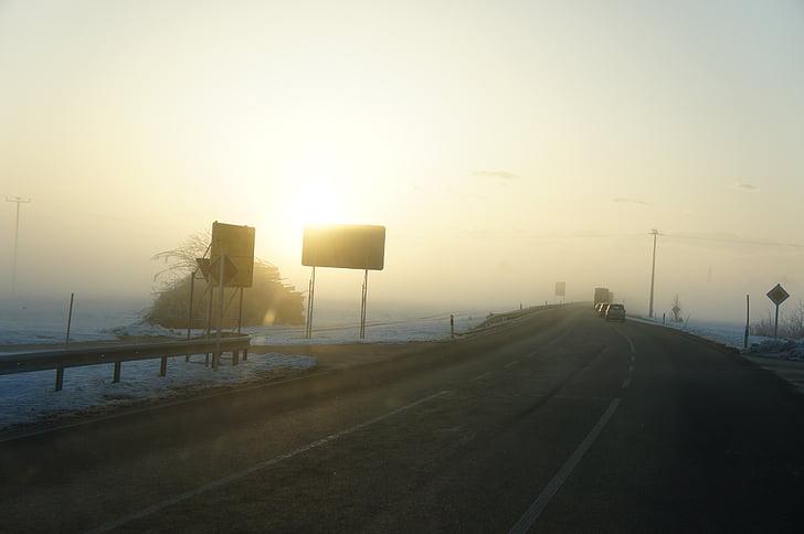 fog, morning, road, winter, nature, signs, morning sun