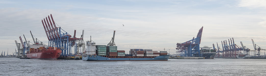 port, hamburg, container, cranes, freighter, sea, container port