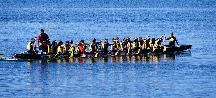 Drakbåtsfestival, roddtävlingen, Nya Zeeland, paddel