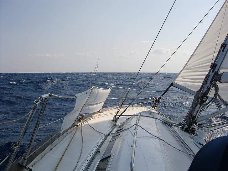 segelbåt, havet, vind, våg, segel, sommar, vatten