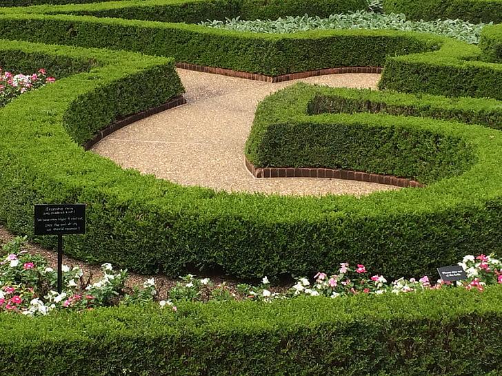 garden design, curves, maze, green, flowers, design, nature