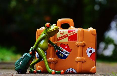 frog, travel, holiday, fun, funny, figure, go away