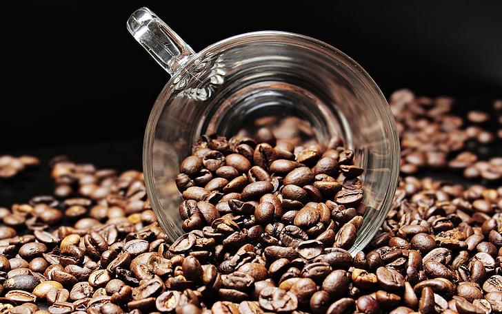 grans de cafè, tassa de cafè, Copa, cafè, plaer, fesols, cafeïna