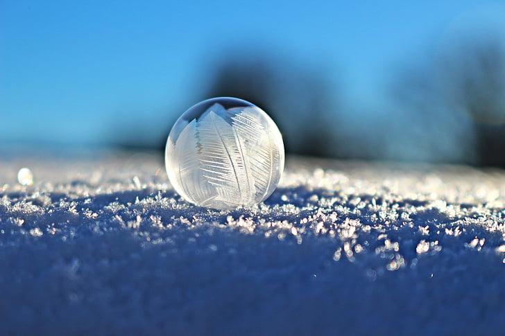 bombolla de sabó, bombolla, eiskristalle, neu, l'hivern, congelat, bombolla congelat