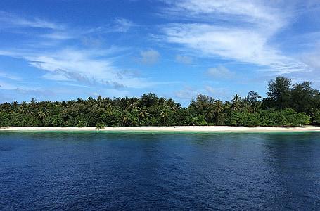 maldives, island, beautiful beach, warm, palm trees, dream holiday, exotic