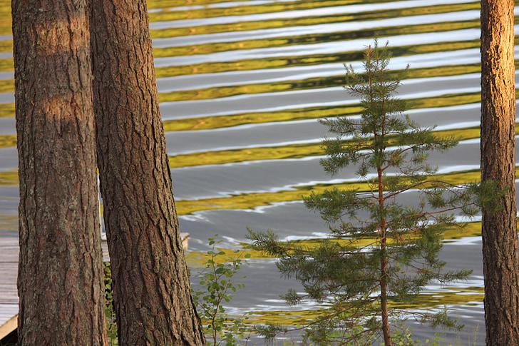 Lake, Saimaa, lained, Daybreak