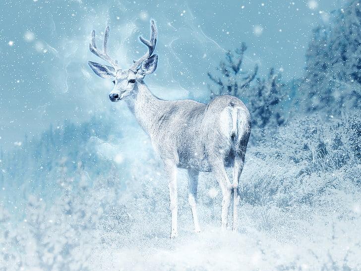 Лос, сняг, Елк, животните, изкуство, дива природа, Scrapbooking