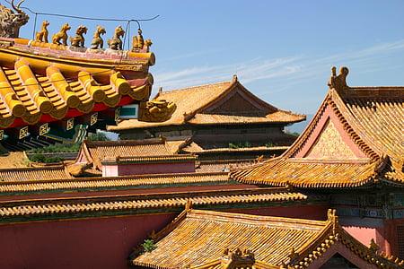 sostre, Xina, drac, arquitectura, Pequín, Palau, adorn