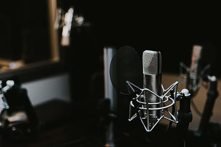 в приміщенні, макрос, мікрофон, мікрофон, звук, запис звуку, номер-студіо