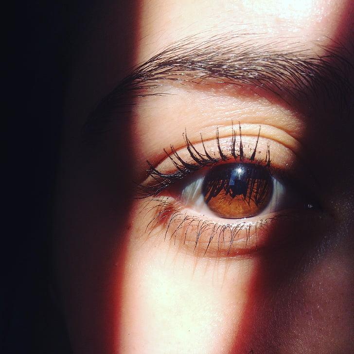 silma, pruun, Sol