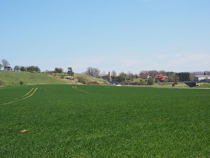 äng, fältet, vandra, Lime ugn museum, munderkingen, Obermarchtal, Lime arbetar