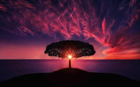 krajina, Příroda, oceán, Romantický, obloha, slunce, východ slunce