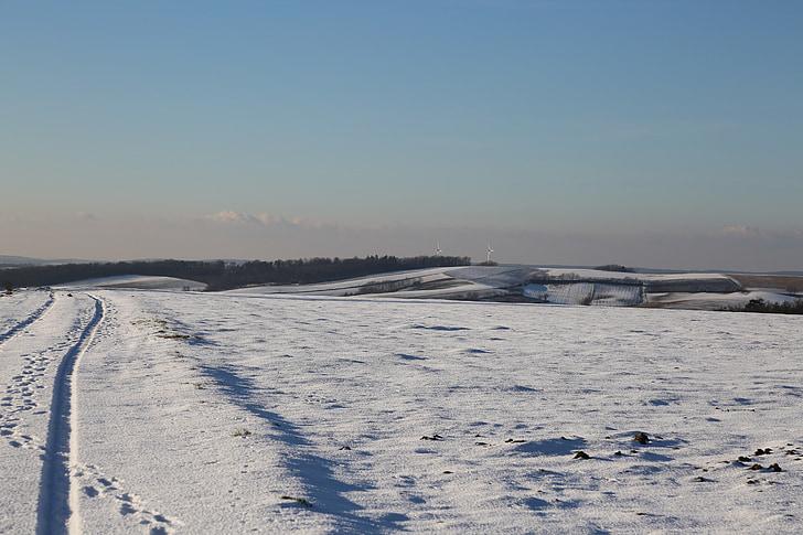 winter, snow, wintry, white, nature, landscape, field