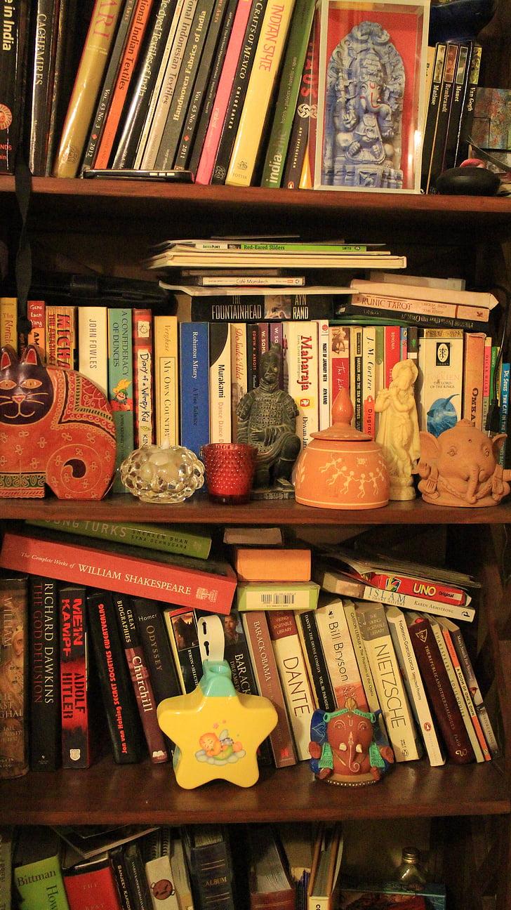 bookshelf, books, library, literature, bookcase