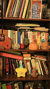 bookshelf, books, library, literature, bookcase