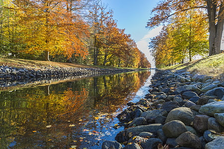 Sonbahar, Kanal, Sonbahar, manzara, doğa, açık havada, Park