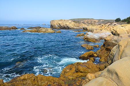 EUA, Amèrica, Costa, costa oest, punt de lobos, paisatge, del Pacífic