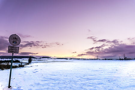 sol, neu, fred, gelades, l'hivern, natura, sol de la tarda