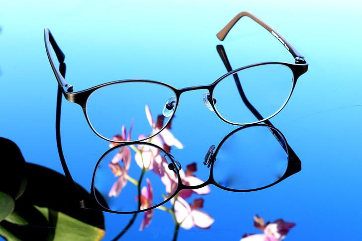 ulleres, orquídia, veure, agudesa, lents, ulleres, veuen bé