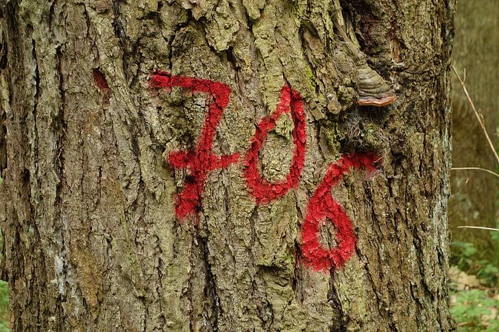 fa, Tagged, erdő, törzs, napló, szám, 706