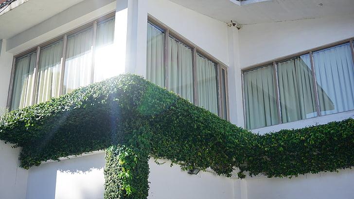 arquitectura, llum natural, jardí, resplendor, vidrieres, disseny d'interiors, llum