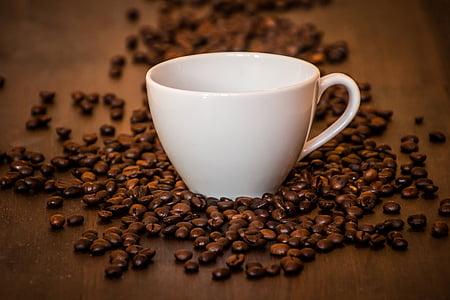 καφέ, φλιτζάνι καφέ, Κύπελλο, καφέ, καφεΐνη, ποτό, κόκκοι καφέ