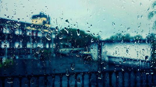 rain, rain on window, raindrops, rainy, drop, window, raindrop