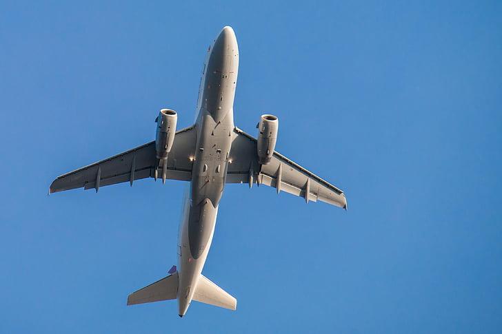 ilma-aluksen, lentää, taivas, Flyer, siipi, lento, sininen