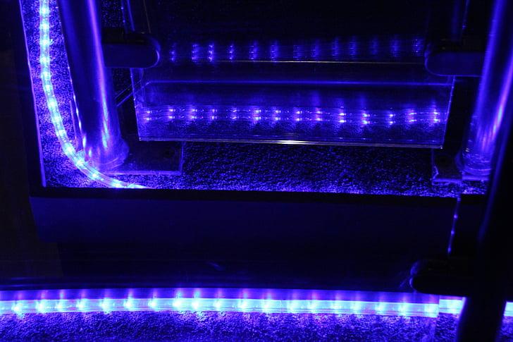 sinine valgus, sinine, valgus, ruumi, sinine tuba, soojuse - temperatuuri