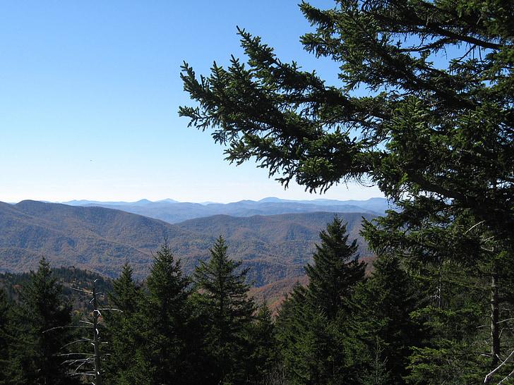 Blue ridge parkway, Blue ridge Dağları, dağlar, Sonbahar, manzara, Evergreen, Orman