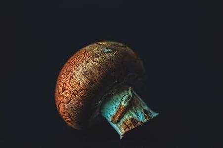 Detailní pohled, jídlo, houby, detail