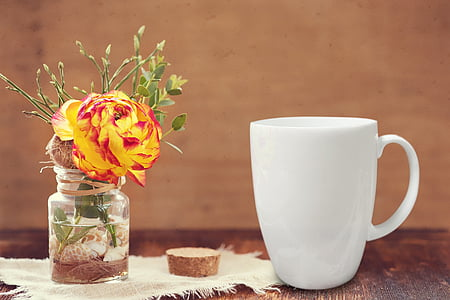 květ, váza, hrnek, dekorace, světlé, květinové, bílá