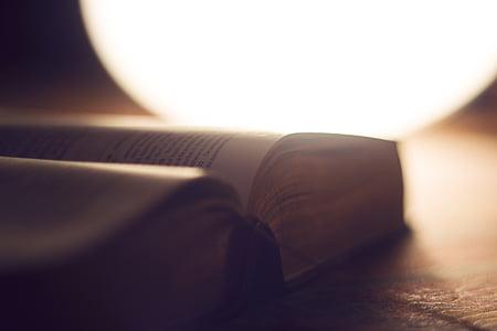 Bible, flou, livre, gros plan, document, mise au point, lumière