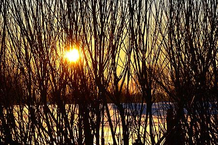 sunset, winter, wintry, snow, sky, romantic, snowy