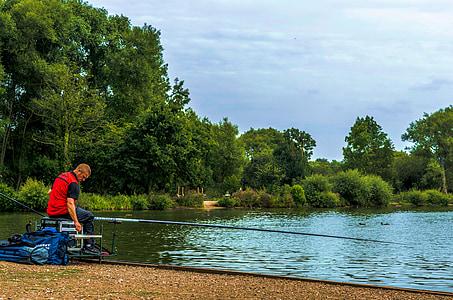 fishing, man, rod, angler, lake, trees, outdoors