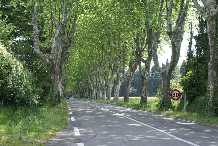 sud de França, carretera, Provença