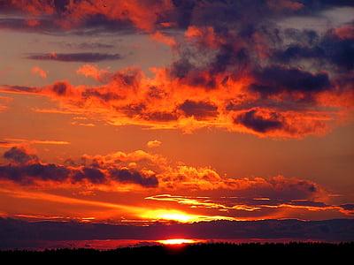 solnedgång, Novovoronezj, sommar, naturen, skymning, Sky, solen