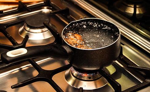 paella, l'aigua, cuina, bullir l'aigua, foc, estufa, Œuf