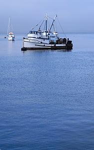 hamn, vatten, skjul, Monterey bay, fartyg, USA, Kalifornien