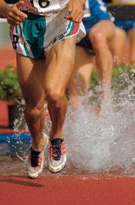 cames de corredors, competència, cursa, peus, l'aigua, sabates, esport