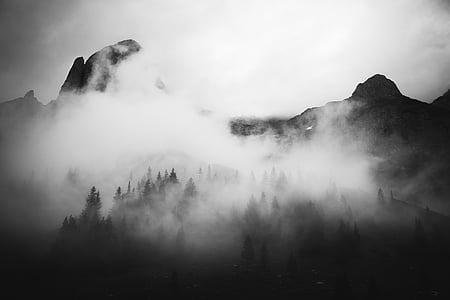 black-and-white, foggy, forest, mountains, nature, trees