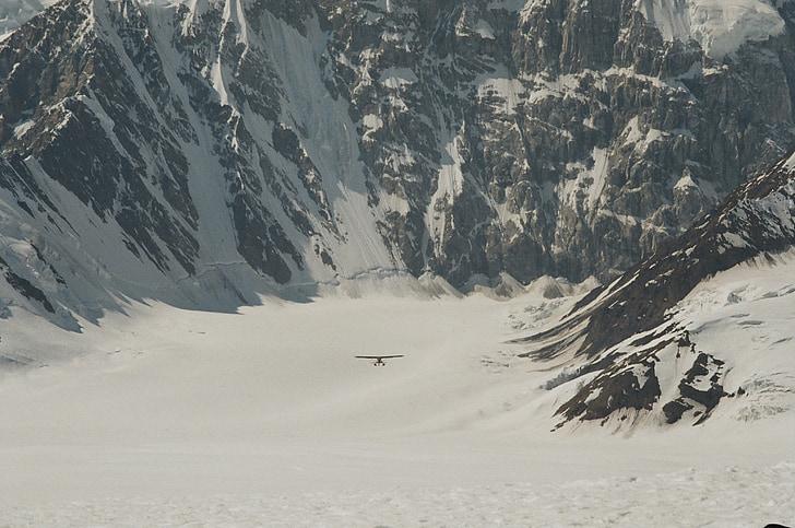 avió d'esquí, pilot de Bush, Alaska, Parc Nacional de Denali, avió, paisatge, volant