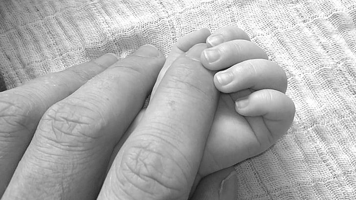 nadó, en blanc i negre, dits, mans, mans de celebració, l'amor, nadó